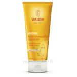 Weleda Après-shampooing Régénérant à L'avoine 200ml à Clermont-Ferrand