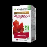 Arkogélules Vigne Rouge Bio Gélules Fl/45 à Clermont-Ferrand