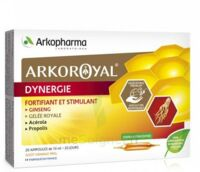 Arkoroyal Dynergie Ginseng Gelée Royale Propolis Solution Buvable 20 Ampoules/10ml à Clermont-Ferrand
