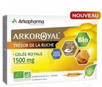 Arkoroyal Gelée Royale Bio Sans Sucre 1500mg Solution Buvable 20 Ampoules/10ml à Clermont-Ferrand