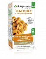 Arkogélules Fenugrec Bio Gélules Fl/40 à Clermont-Ferrand