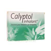 Calyptol Inhalant, émulsion Pour Inhalation Par Fumigation à Clermont-Ferrand