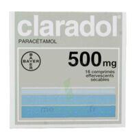 Claradol 500 Mg, Comprimé Effervescent Sécable à Clermont-Ferrand