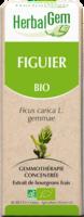 Herbalgem Figuier Macerat Mere Concentre Bio 30 Ml à Clermont-Ferrand