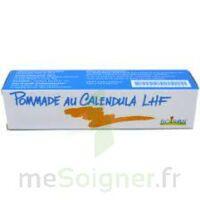 Calendula Lhf Pom T/20g à Clermont-Ferrand