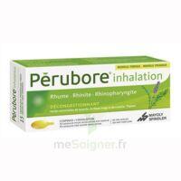 Perubore Caps Inhalation Par Vapeur Inhalation Plq/15 à Clermont-Ferrand