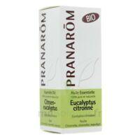Huile Essentielle Eucalyptus Citronne Bio Pranarom 10 Ml à Clermont-Ferrand