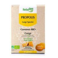 Herbalgem Propolis Large Spectre Gomme Bio B/24 à Clermont-Ferrand