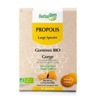 Herbalgem Propolis Large Spectre Gomme Bio B/24
