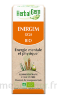Herbalgem Energem Solution Buvable Bio Fl Cpte-gttes/30ml à Clermont-Ferrand