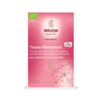"Weleda Tisane Allaitement ""fruits Rouges"" 2x20g à Clermont-Ferrand"