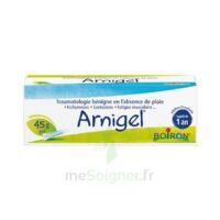 Boiron Arnigel Gel T(alumino-plastique)/45g à Clermont-Ferrand