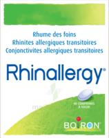 Boiron Rhinallergy Comprimés B/40 à Clermont-Ferrand