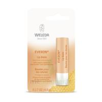 Weleda Soin Des Lèvres Everon® 4,8ml à Clermont-Ferrand