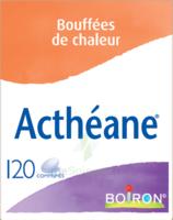 Boiron Acthéane Comprimés B/120 à Clermont-Ferrand